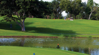 GEESE_waterunit-GOLF-02C-gallery